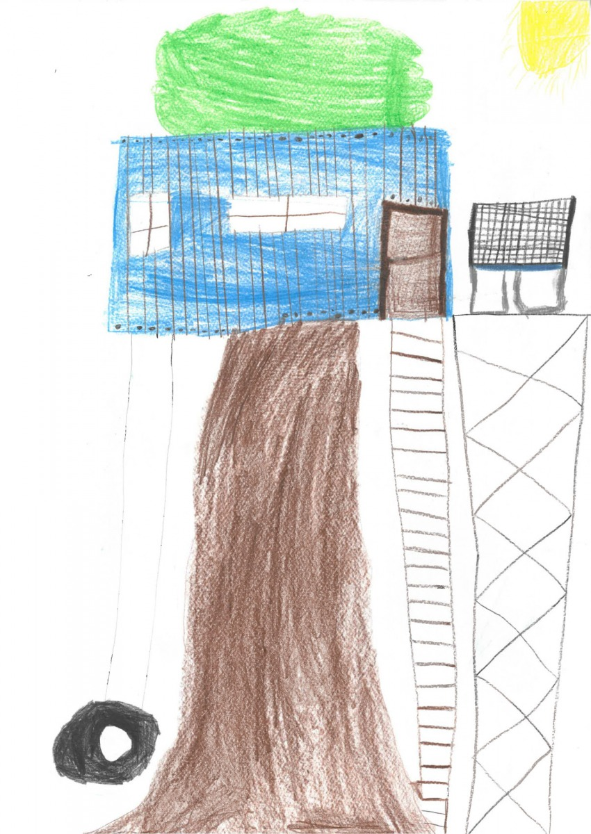 Nico, Dürnkrut, 9 Jahre